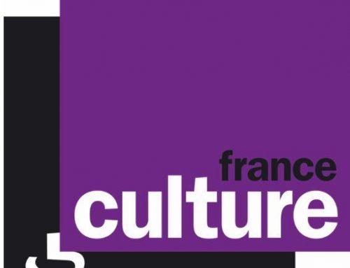 France Culture couvre mon marathon pour l'Europe